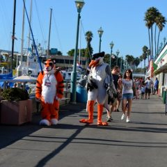 Image from Antheria convention in Redondo Beach.